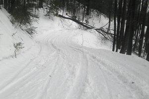 Stopy po vozidle a spílené stromy na obľúbenej bežeckej trati.