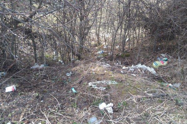Neporiadok v okolí kríkov na parkovisku pri Handlovskom rybníku.