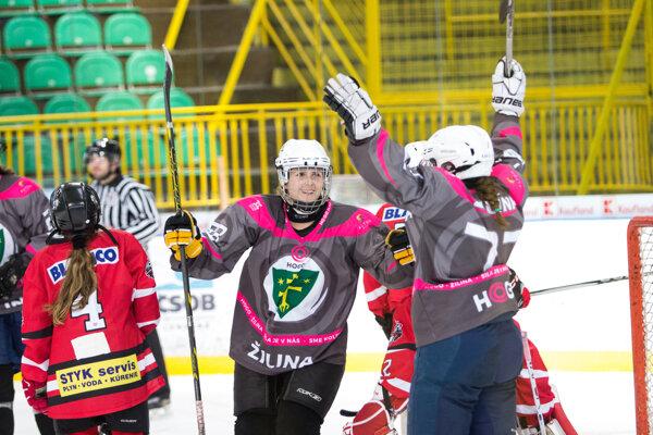 Na turnaji nastúpili dva žilinské výbery, MsHKM aj HOGO.