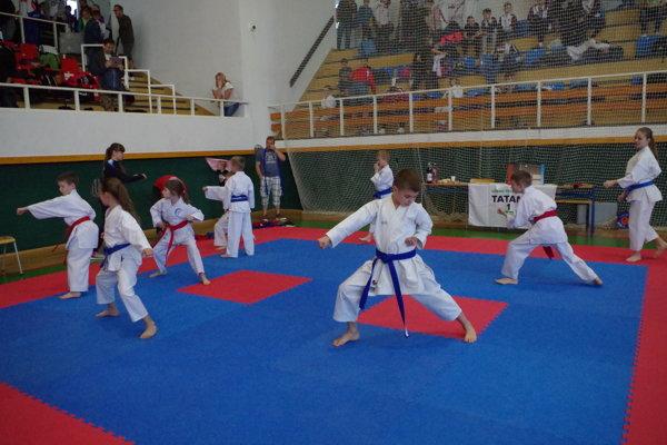 Podujatie Grand Prix Žilina bolo určené najmä pre deti amládež.