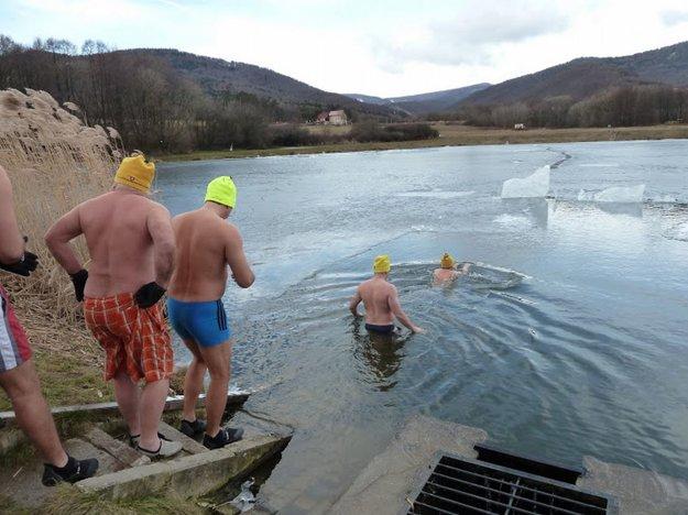 13. marca organizujú ľadové medvede celoslovenské kúpanie.