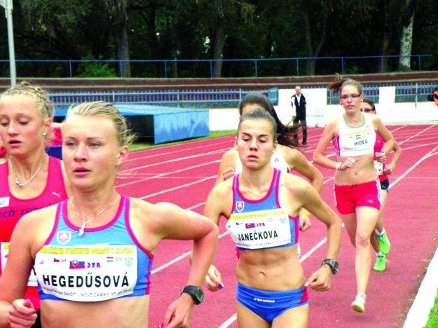 Nové Zámky organizovali vroku 2012 medzinárodné trojstretnutie dorastencov Čechy – Maďarsko – Slovensko.