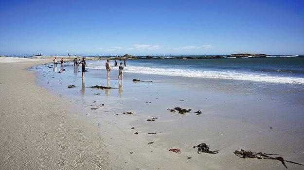 Camps bay, Kapské mesto.