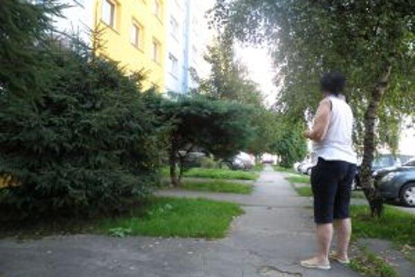 Na tomto chodníku na Javorovej ulici zaútočil páchateľ zatiaľ naposledy.