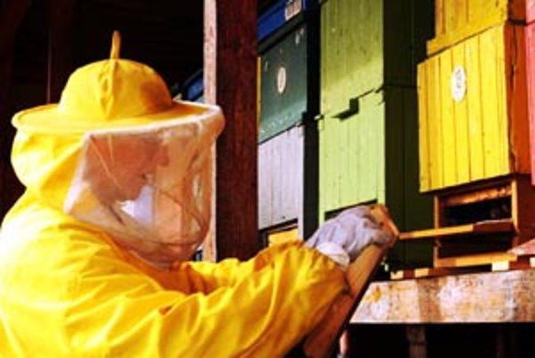 Včelárov znepokojila choroba. Prijali štandartné opatrenia, aby ju zastavili