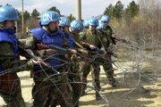 Mierové sily OSN.