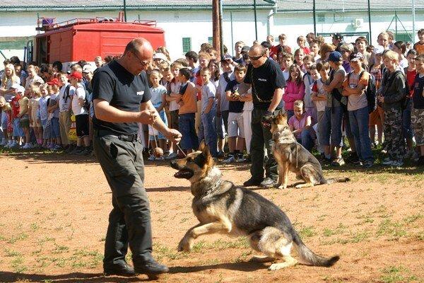 Za policajné psy sa daň platiť nemusí.