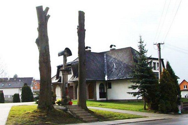 Neuveriteľne orezané stromy v Zubrohlave.