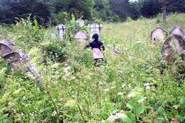 Židovský cintorín v tvrdošínskom katastri je vo veľmi zlom stave. Na jeho úpravu nie sú peniaze.