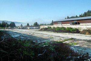Na spracovanie zeleného odpadu je pripravená plocha s rozlohou štyristo metrov štvorcových.