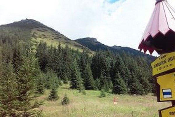 Z Bobroveckého sedla je to na vrch Bobrovec na skok. No nedostanete sa naň.