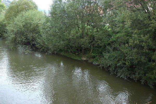 Ľudia žijúci v blízkosti rieky chcú vyregulovať jej brehy, obávajú sa o svoj majetok.