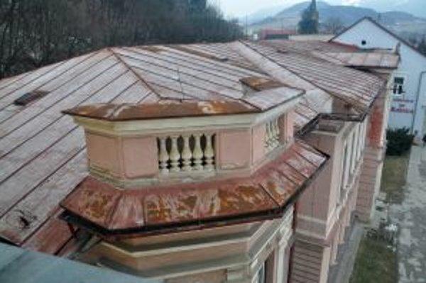 Pod strechou školy bývajú stovky netopierov.
