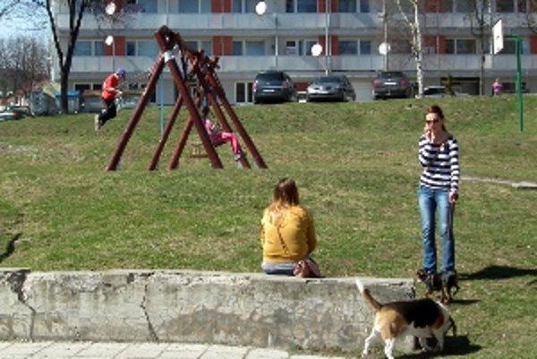 Pes na vôdzke je skôr výnimkou ako pravidlom.