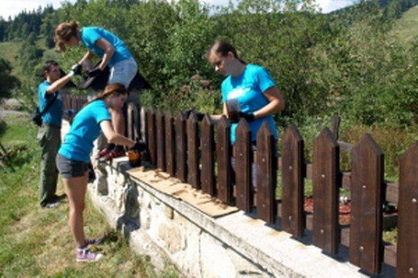Mládež namaľovala starý drevený plot.