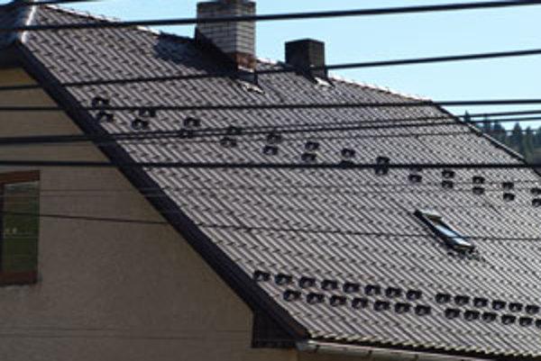 Lapače snehu sú potrebné najmä na strechách s plechovou krytinou a na domoch, ktoré stoja na hranici susedného pozemku.