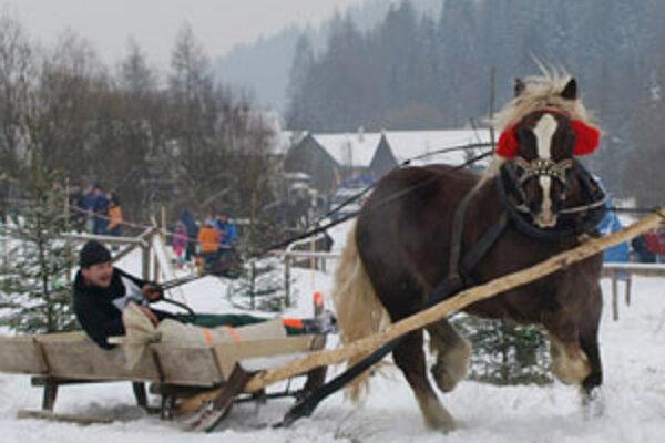 Jazda zručnosti preverí nielen manuálnu zručnosť furmana, ale aj jeho umenie viesť koňa a súlad s ním.