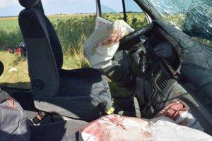 Vodič prešiel do protismeru, kde čelne narazil do stromu.