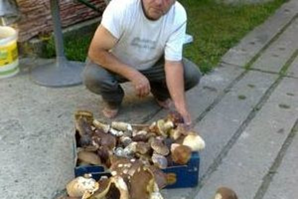 """Martin Gostík si z poslednej """"hubačky"""" priniesol v košoch 150 pravých dubákov."""