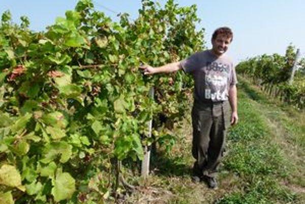 Viliam Uhlár trávi vo vinohrade väčšinu času.