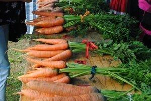 V Pribiši na Orave dorastie mrkva do krásy.