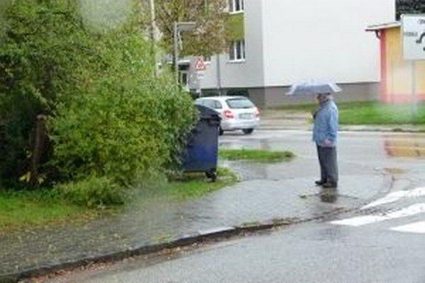 Križovatka na Podháji. Vodičom vo výhľade prekáža rozkonárený strom a aj kontajner.