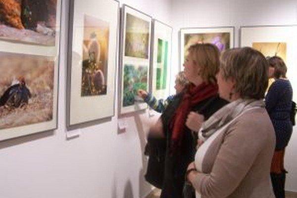 Múzeum Andreja Kmeťa sa postupne otvára návštevníkom.