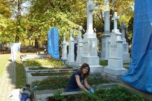 Matičiari čistili hroby dejateľov na Národnom cintoríne v Martine.
