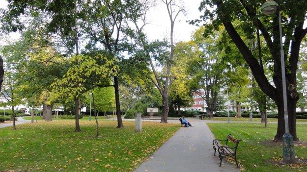 Park spolu s priľahlými chodníkmi a cestami mal zrekonštruovať investor Zvolenskej Europy.