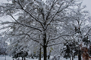 V Pezinku snežilo 1. decembra.