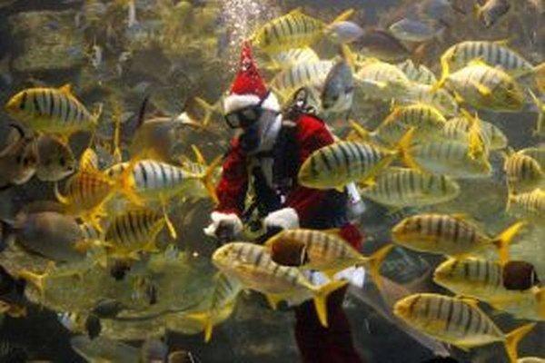 Odkiaľ Santa Claus vyráža na svoju vianočnú púť po celom svete sa asi presne nedozvieme. Isté je však, že prostredníctvom potápača v kostýme bol aj kŕmiť ryby v podmorskom akváriu v malajzijskom zábavnom parku Aquaria KLCC v Kuala Lumpure.