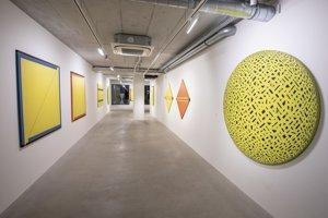 Pohľad na výstavu Geometria v žltom vo White&Weiss Gallery