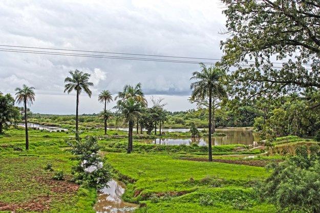 Tropický park Abuko