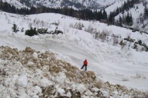 Lavína mala dĺžku 900 metrov, pričom hlavný nános mal dĺžku 400 metrov a šírku 20 metrov.