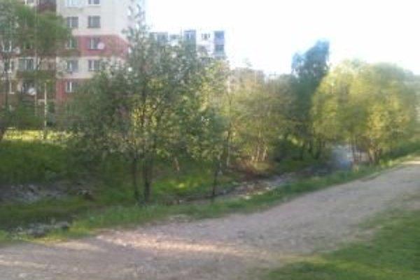 Slovenský vodohospodársky podnik sa o tok Smrečianky pravidelne stará. V rámci údržby likviduje aj rastliny v prietočnom koryte, burinu kosia alebo ničia chemickým postrekom.