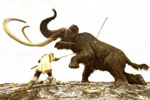 Zmrznuté telá mamutov objavili v ľade na Sibíri.
