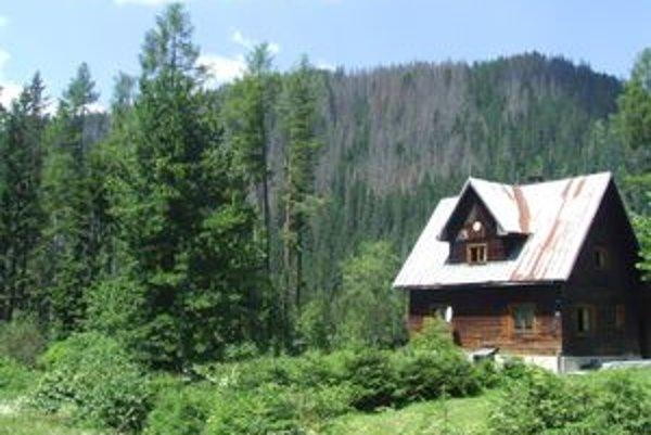 Domček na rázcestí Tichej a Kôprovej doliny, pred ním limba, ktorú Miroslav Čisár starší vysadil pred štyridsiatimi rokmi, keď sa mu v doline narodila dcéra.