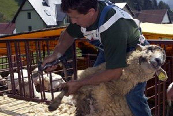 Medzinárodné Majstrovstvá Slovenska v strihaní oviec tohto roku sa uskutočnia v nedeľu 1. augusta.