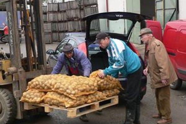 Záujem maloodberateľov o zemiaky sa zvyšuje, aj keď sú o sto percent drahšie a treba si na ne vystáť v rade.