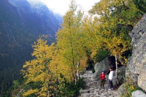 Turistické chodníky v Tatranskom národnom parku budú uzavreté do 15. júna budúceho roka.
