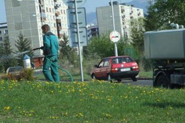 Starostlivosť o zeleň by mala byť lepšia ako v minulých rokoch.