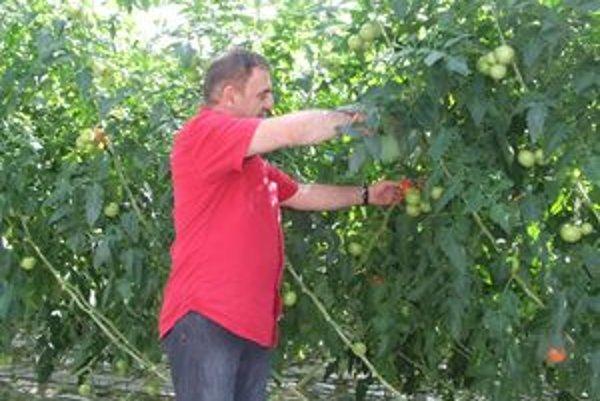 Levan Sherezadishvili  v bešeňovskom skleníku, kde paradajkám hrá hudba a návštevník nesmie mať pri sebe mobil.