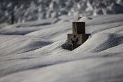 V Oravskej Lesnej je priemerná ročná teplota okolo päť stupňov. Aj vo februári je tu ešte sedemdesiat centimetrov snehu.
