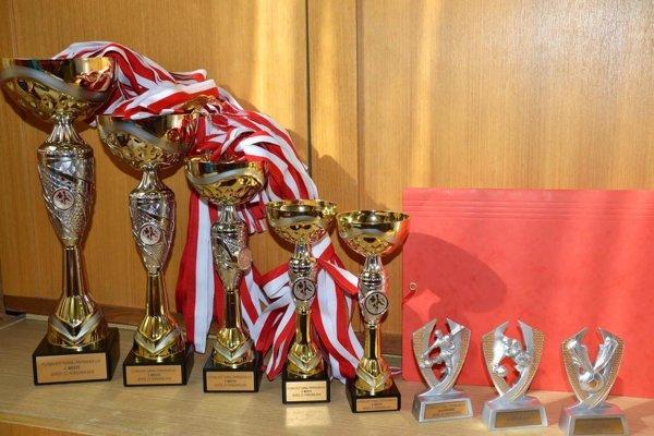 Malí futbalisti bojovali o pekné trofeje.