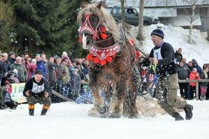 Na furmaských pretekoch v Novoti sa predstavilo 29 súťažiacich.