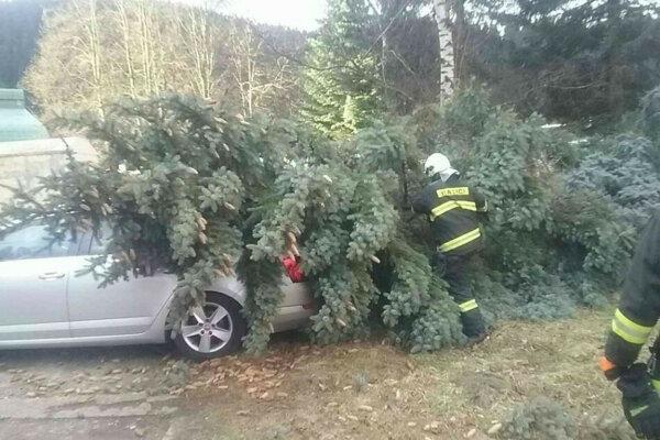 Pri odstraňovaní kalamít pomáhali hasiči.