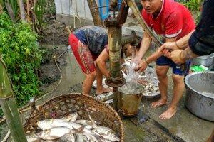 Čistenie rýb