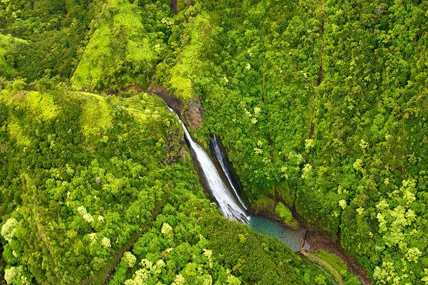 Vodopády Manawaiopuna preslávil film Jurský park.