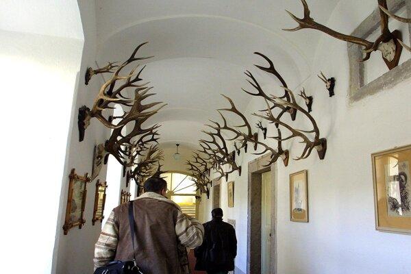 Poľovnícke múzeum v kaštieli vo Svätom Antone.