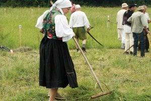 Hrabanie pokosenej trávy.